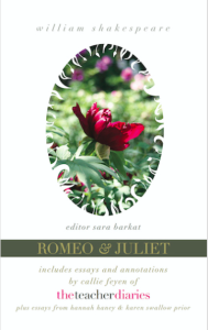 CF-Teacher-Diaries-Companion-Romeo-and-Juliet-Play-360x570